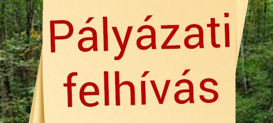 palyazati_1